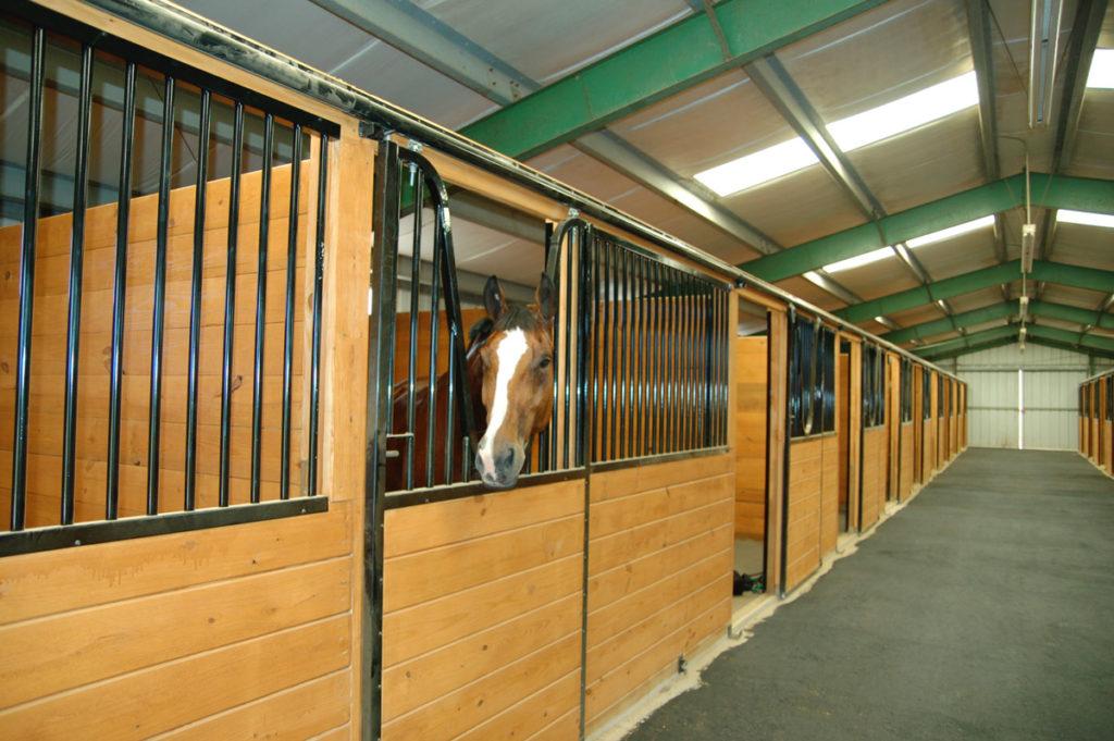Gallery – Belclare Farm